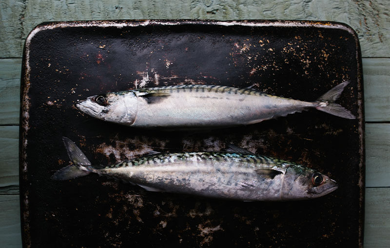 Two fish on tray